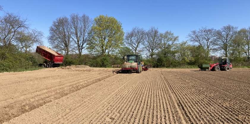 Kartoffeln pflanzen 2021
